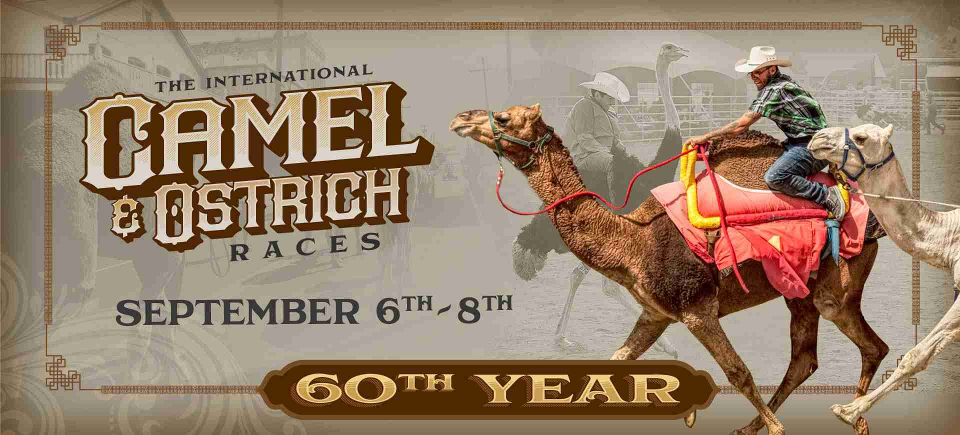 20129Camel & Ostrich Races 60th Year