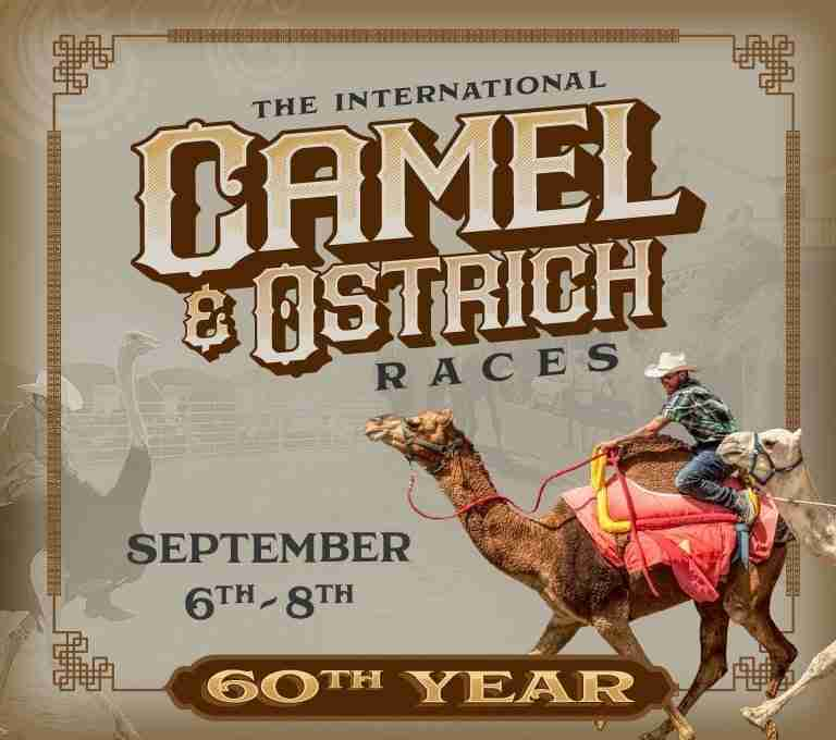 Camel & Ostrich Races 60th Year