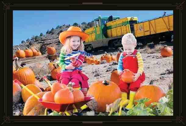 Pumpkin Patch Train